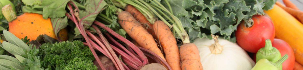 Udržitelná strava